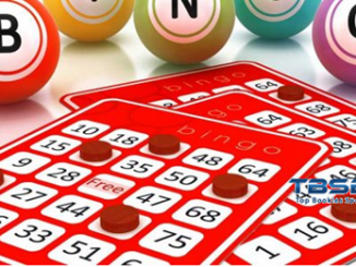 Tips on How to Compare Bingo Sites