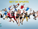Types and Modalities of Sports Betting