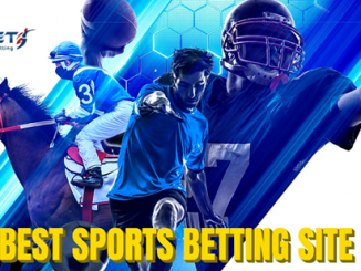 What Sports Betting Sites have the Best Odds?